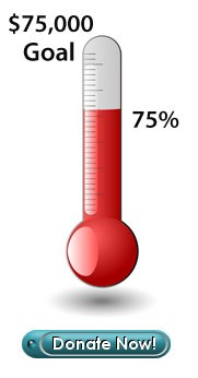 Red Thermometer Donate Now